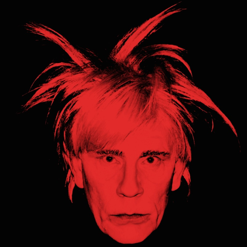Andy Warhol / Self Portrait (Fright Wig) (1986), 2014 by Sandro Miller