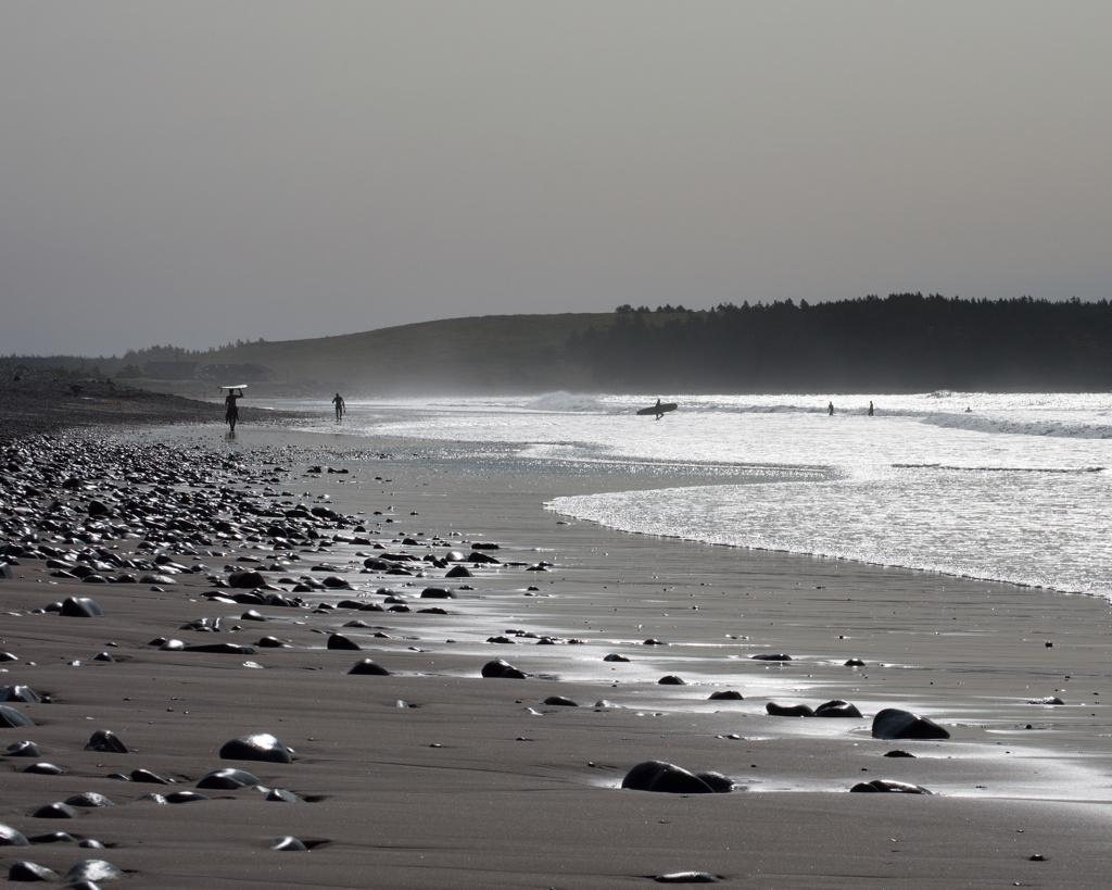 Endless Summer, Part I | Reghan Skerry