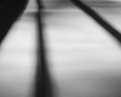 2017 Project365 #260 | Reghan Skerry