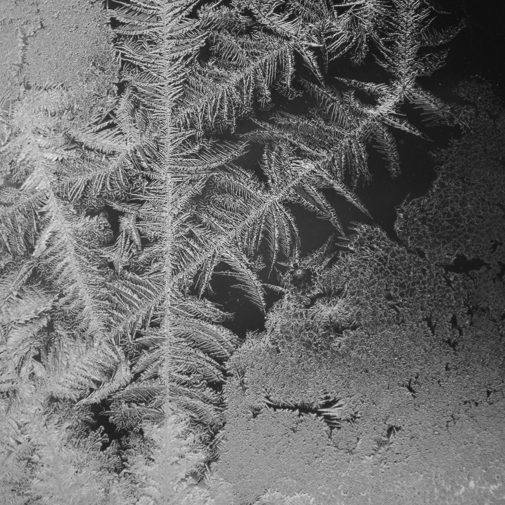 Black and white photo of frost on a window by Reghan Skerry.