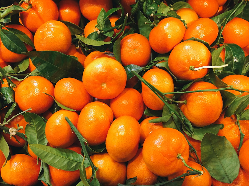 Photo of clementine oranges with leaves and stems. Photo by Reghan Skerry.