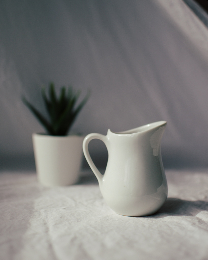 A white pitcher in front of an out of focus plant, on a white cloth background, by Reghan Skerry.