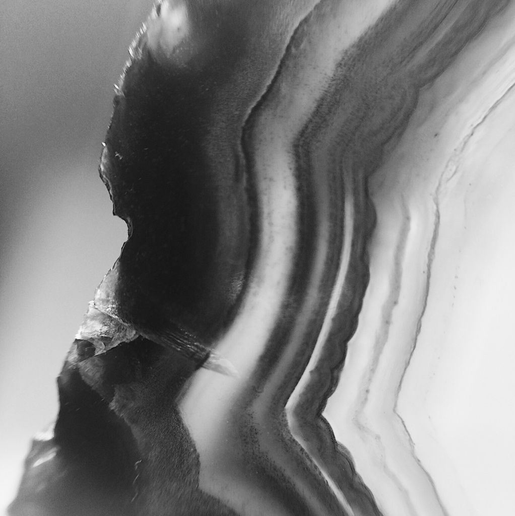 Close up of a stone, in black and white. Photo by Reghan Skerry.