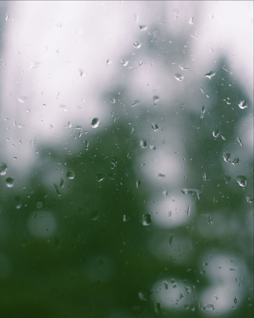 Raindrops on a window, with blurred trees in the background. Photo by Reghan Skerry.
