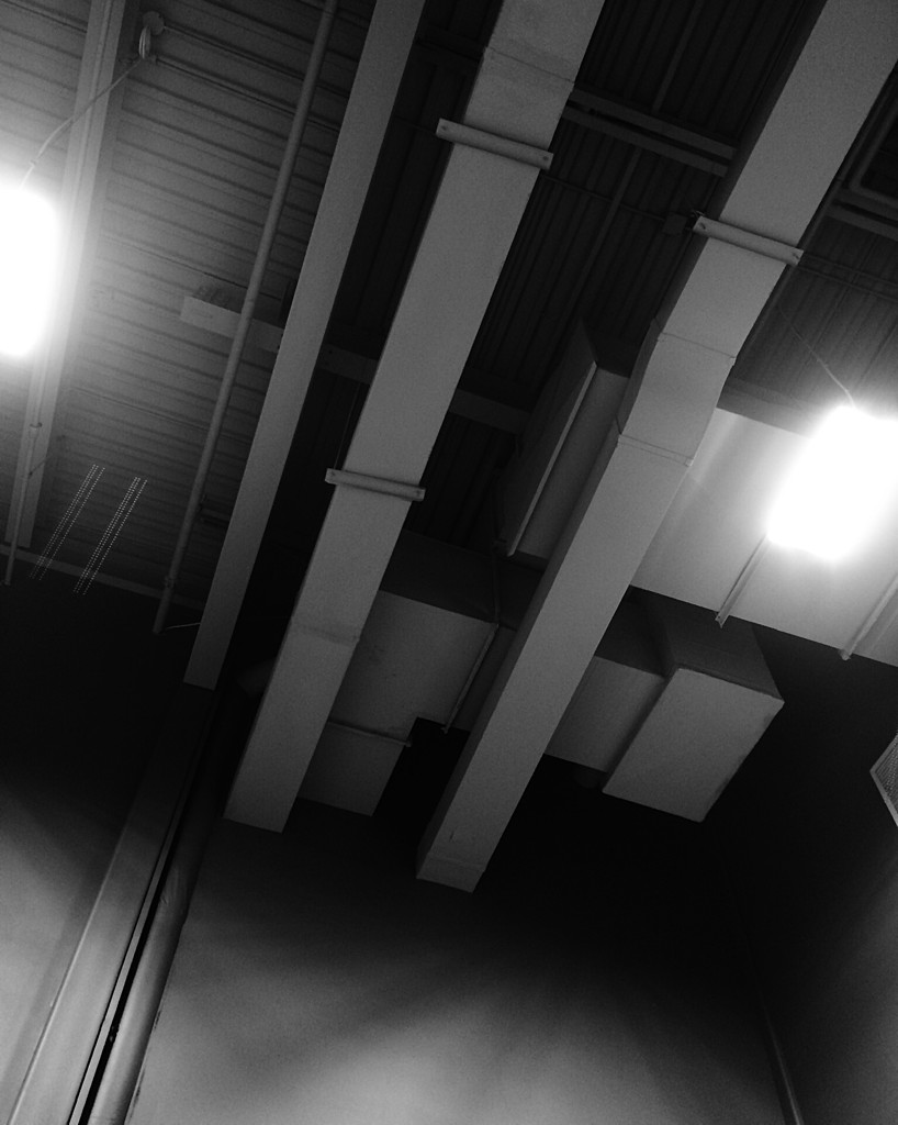 Black and white photo of a ceiling with ductwork and fluorescent lights. Photo by Reghan Skerry.