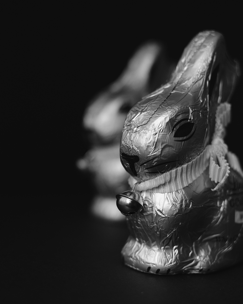 Black and white photo foil-wrapped chocolate bunnies. Photo by Reghan Skerry.