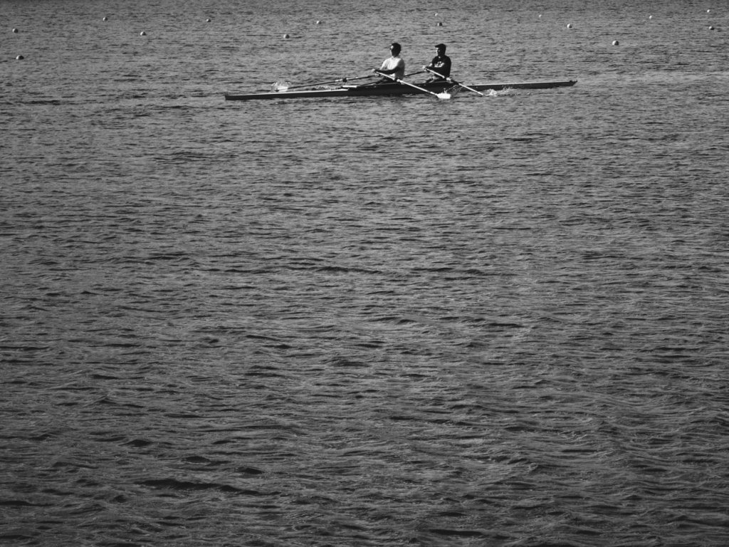 Black and white photo rowers on a lake. Photo by Reghan Skerry.