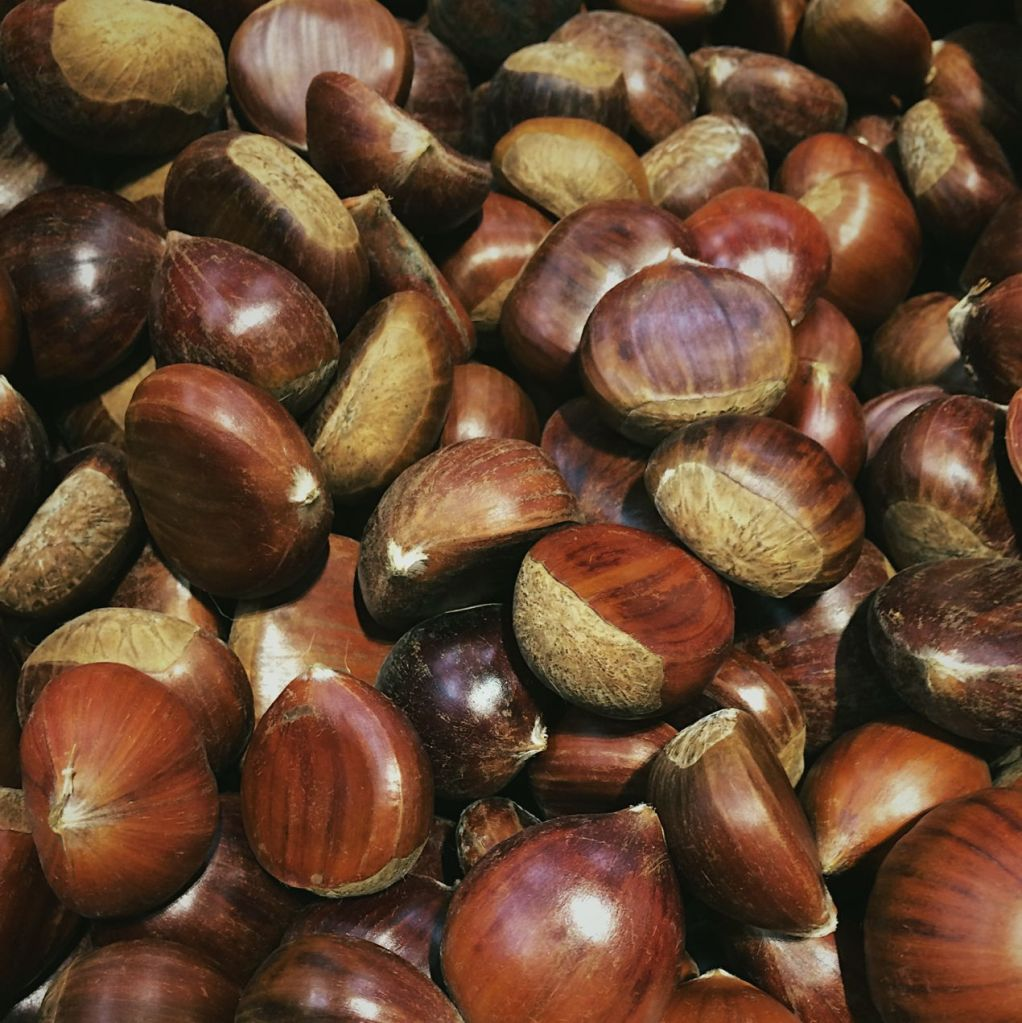 Chestnuts. Photo by Reghan Skerry.