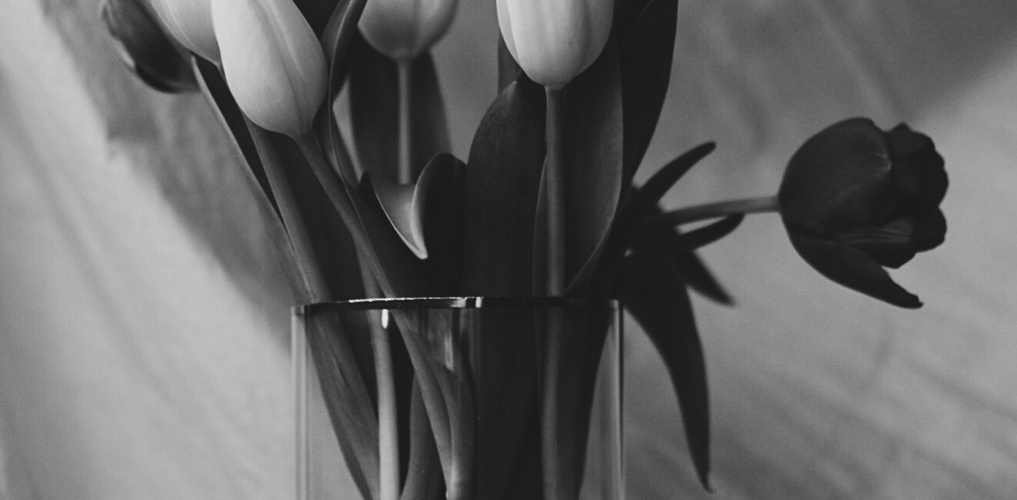 Black and white photo of tulips in a glass vase. Photo by Reghan Skerry.