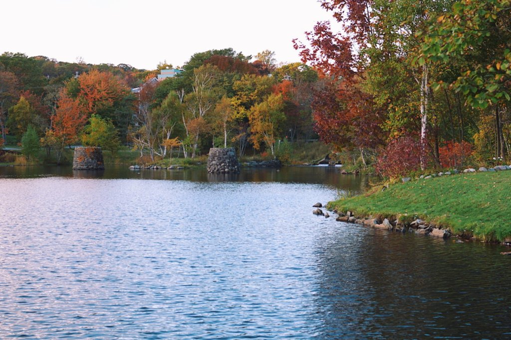 Autumn leaves at Sullivan's Pond. Photo by Reghan Skerry.