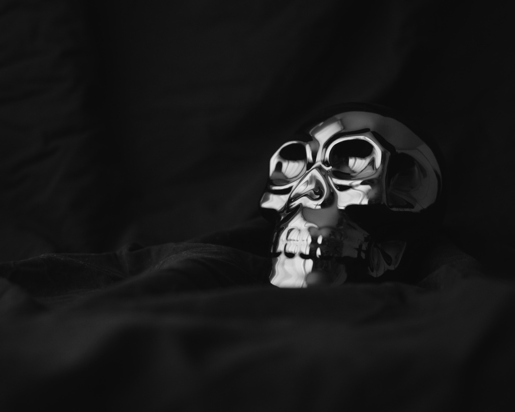 Black and white photo of a metallic skull decoration on a black backdrop. Photo by Reghan Skerry.