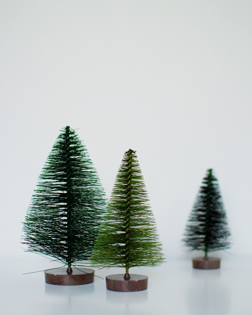 Three bottlebrush tree ornaments on a white background. Photo by Reghan Skerry.